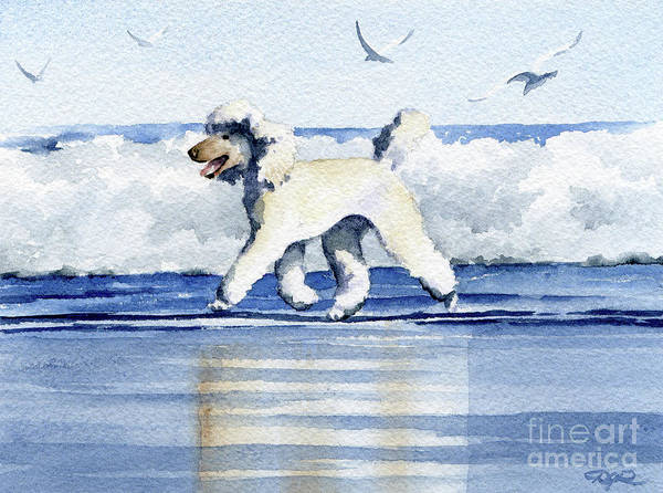 Poodles Wall Art - Painting - Poodle At The Beach  by David Rogers