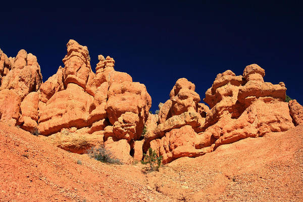 Photograph - Red Canyon Hoodoos by Pierre Leclerc Photography