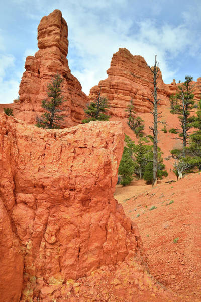 Highway 12 Wall Art - Photograph - Red Canyon by Ray Mathis