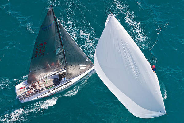 Photograph - Regatta Spinnaker by Steven Lapkin