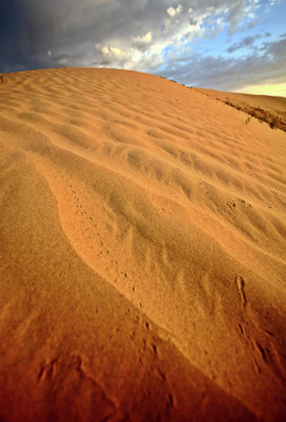 Sand Dunes Digital Art - Sand Dune At Great Sand Hills In Scenic Saskatchewan by Mark Duffy