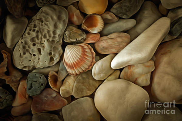 Wall Art - Photograph - Sea Pebbles With Shells by Michal Boubin