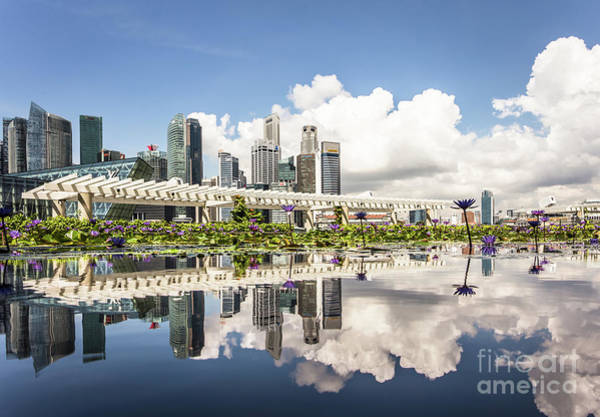 Photograph - Singapore Reflection by Didier Marti