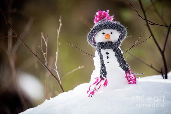 Wall Art - Photograph - Snowman by Kati Finell
