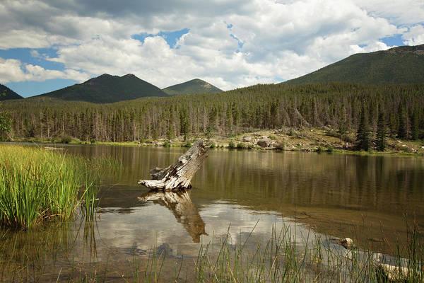 Photograph - Sprague Lake by Sue Collura