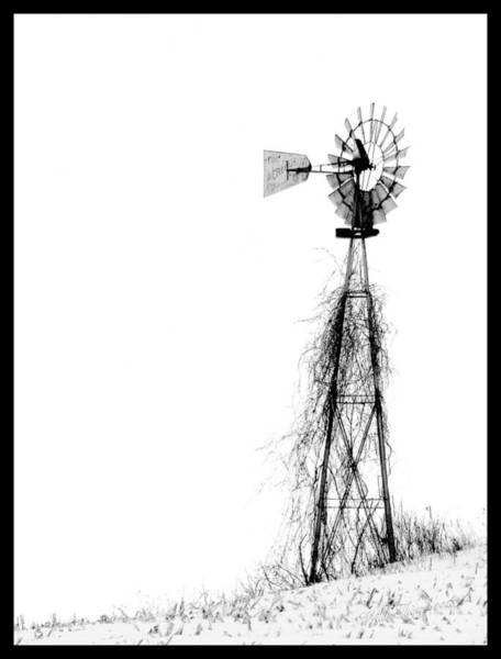 Digital Art - Stand Tall by Wild Thing
