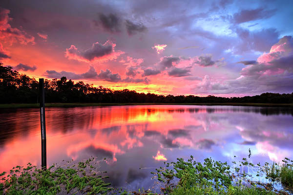 Wall Art - Photograph - Sunset Colors by Rick Mann
