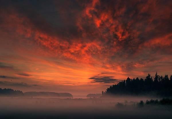 Landscape Digital Art - Sunset by Maye Loeser