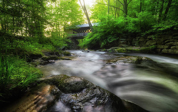 Photograph - Tannery Hill Covered Bridge by Robert Clifford