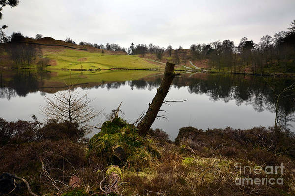 How Wall Art - Photograph - Tarn Hows by Smart Aviation