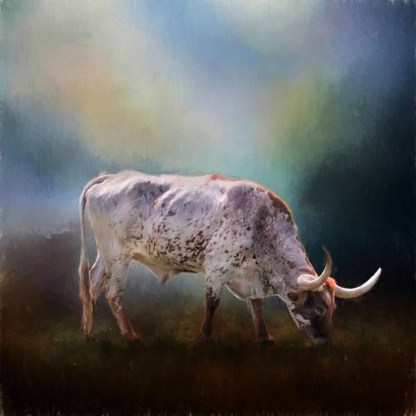 Bovine Photograph - Texas Longhorn Steer by David and Carol Kelly