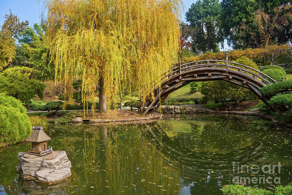 Wall Art - Photograph - The Beautiful Fall Colors Of The Japanese Gardens In The Hunting by Jamie Pham