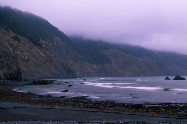 Wall Art - Photograph - The Lost Coast - Sinkyone Wilderness by Soli Deo Gloria Wilderness And Wildlife Photography