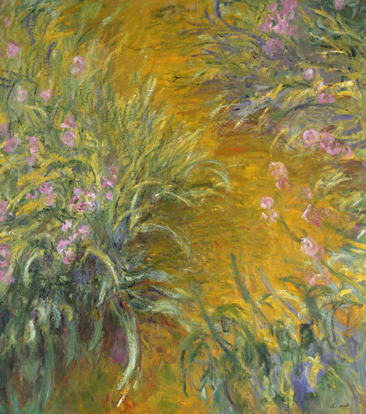 Plant Reproduction Painting - The Path Through The Irises by Claude Monet