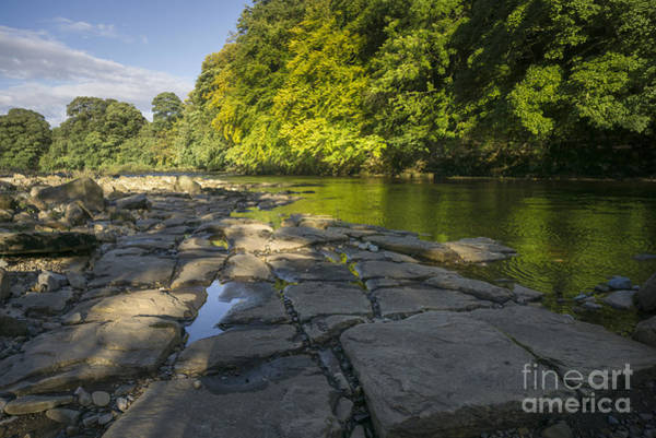 Abbey Photograph - The River Swale by Smart Aviation