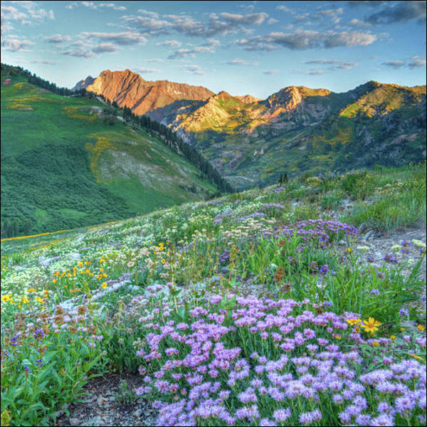 Wall Art - Photograph - Wasatch Mouintains Utah by Douglas Pulsipher