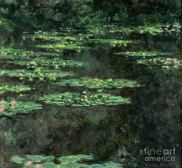 Nympheas Wall Art - Painting - Waterlilies by Claude Monet