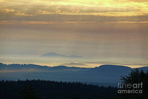 Woodland Wall Art - Photograph - Wooded Hills In The Morning Sun And Fog by Michal Boubin