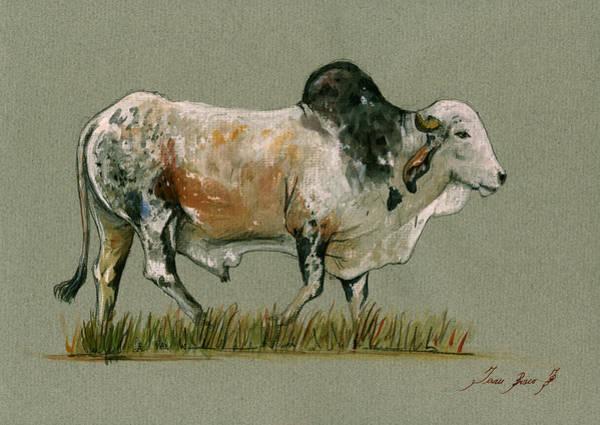 Wall Art - Painting - Zebu Cattle Art Painting by Juan  Bosco