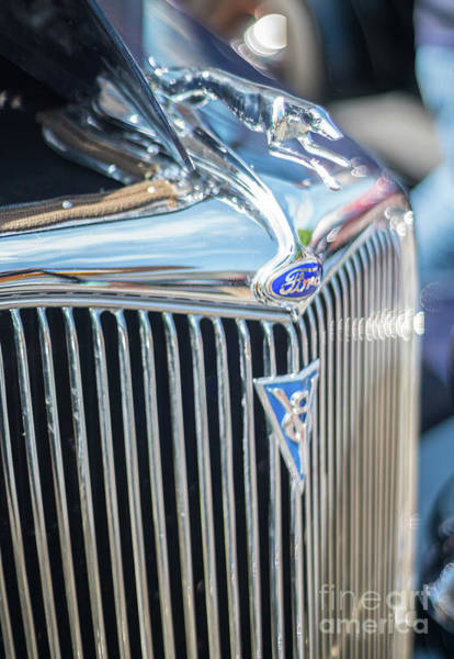 Firebird Photograph - 30s Vintage Ford Radiator And Chrome Greyhound by Mike Reid
