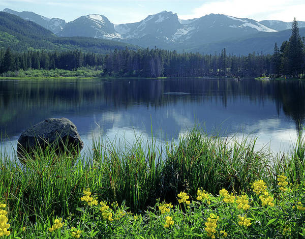Photograph - 310238 Sprague Lake by Ed Cooper Photography