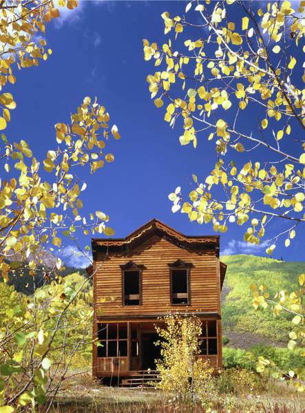 Photograph - 310430 V Aspen Gold And Ashcroft Hotel by Ed Cooper Photography