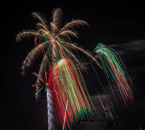 Photograph - Fireworks 2015 Sarasota 6 by Richard Goldman