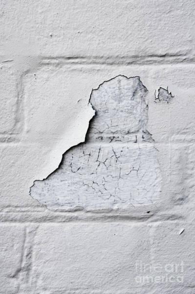 Wall Art - Photograph - Peeling Paint by Tom Gowanlock