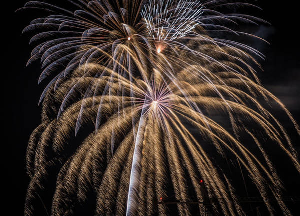 Photograph - Fireworks 2015 Sarasota 3 by Richard Goldman