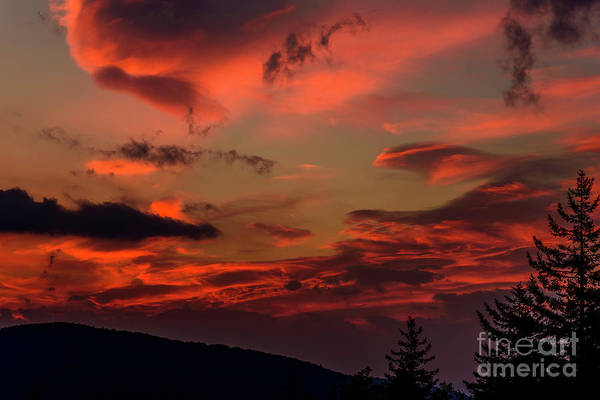 Highland Scenic Highway Wall Art - Photograph - Allegheny Mountain Sunrise #21 by Thomas R Fletcher