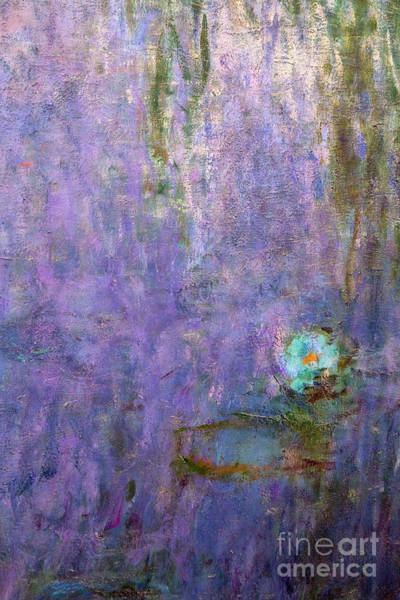 Claude Monet Photograph - Nympheas, Water Lilies by Claude Monet