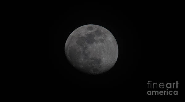 Photograph - Waxing Gibbous  by Dale Powell