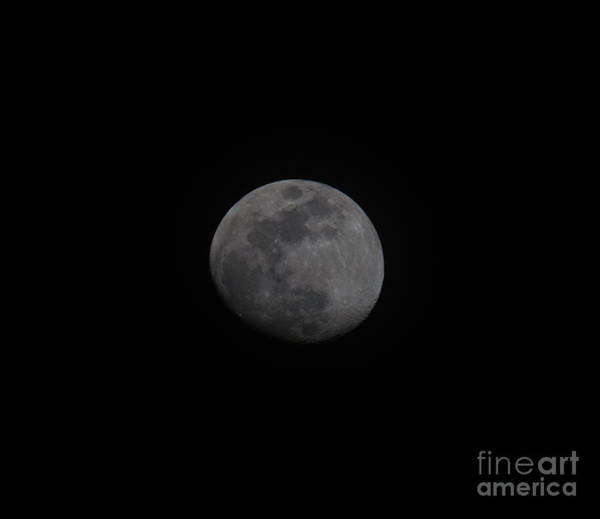 Photograph - Moon Rotation by Dale Powell