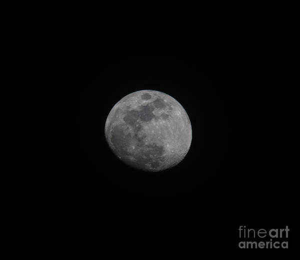 Photograph - Moon Dust by Dale Powell