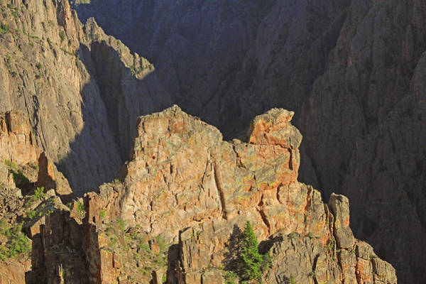 Photograph - 3d10316 Kneeling Camel Viewpoint 2 by Ed Cooper Photography