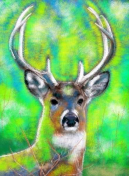Elliott Digital Art - 3lakes Deer by Elliott Aaron From