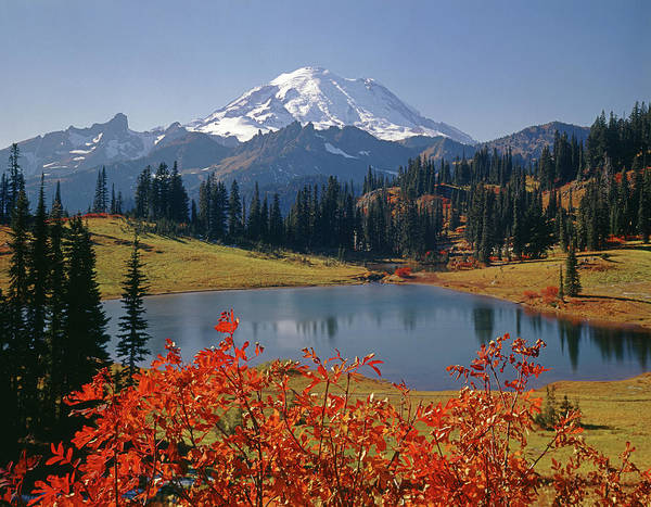 Photograph - 3m4824 Tipsoo Lake And Mt. Rainier H by Ed Cooper Photography