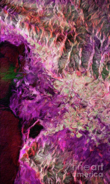 Color Burst Digital Art - Abstract Digital Oil Painting Full Of Texture And Bright Color by Amy Cicconi