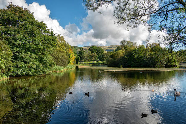 Photograph - Airthrey Loch by Jeremy Lavender Photography