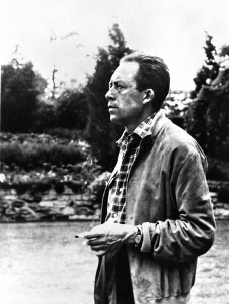 Nobel Prize Laureate Photograph - Albert Camus (1913-1960) by Granger