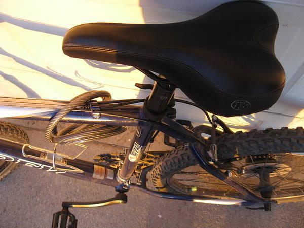 Wall Art - Photograph - Bike by Blake Pereira