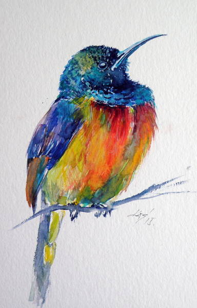Wild Life Painting - Bird by Kovacs Anna Brigitta