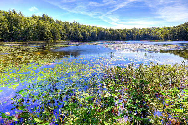 Photograph - Cary Lake In The Adirondacks by David Patterson