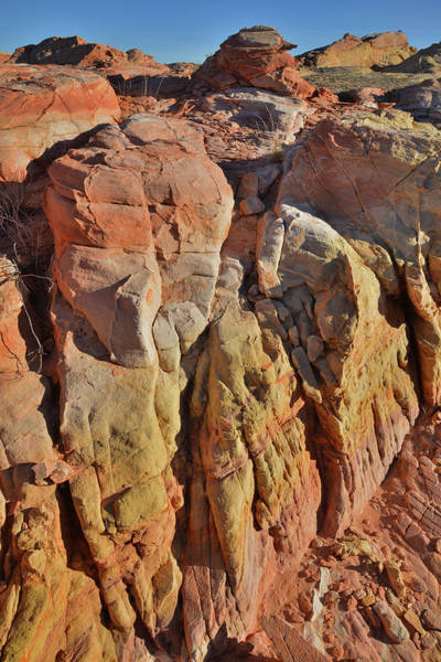 Photograph - Colorful Canyon In Valley Of Fire by Ray Mathis