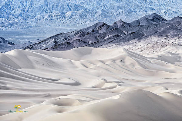 Photograph - Dumont Dunes 4 by Jim Thompson
