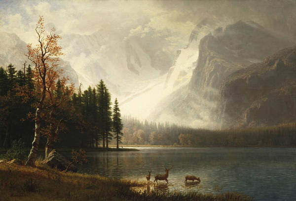 Albert Wall Art - Painting - Estes Park, Colorado, Whyte's Lake by Albert Bierstadt