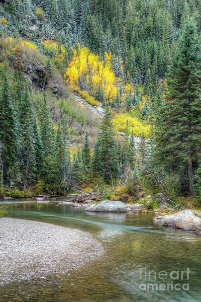 Wall Art - Photograph - Fall In Colorado by Twenty Two North Photography
