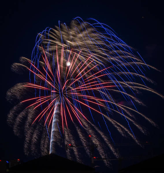 Photograph - Fireworks 2015 Sarasota 33 by Richard Goldman