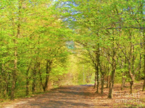Fall Scenery Mixed Media - Forest Path by Miroslav Nemecek