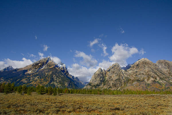 Photograph - Grand Teton's by Mark Smith